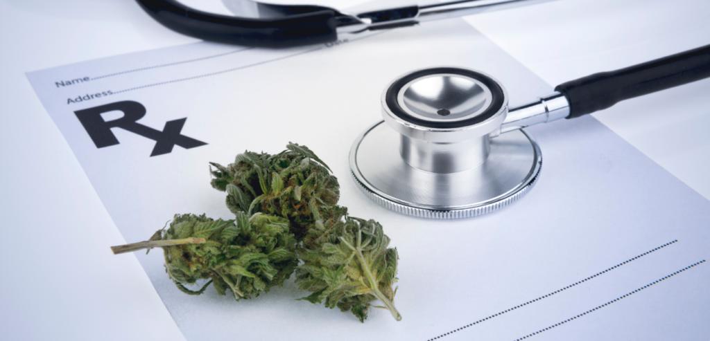 cursos formacion cannabis medicinal